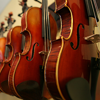 The Violin Market